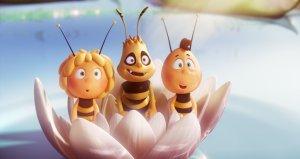 maa the bee still